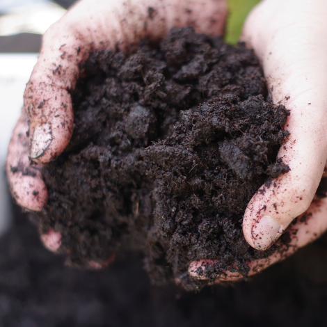 Giving your soil a health check