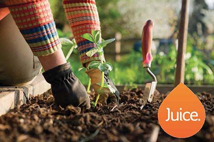 ​Juice Bitesize: April: Spring into Gardening!